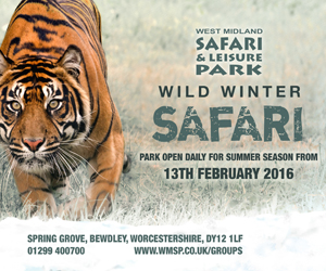 West Midland Safari Park Wild Winter